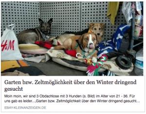 Mit dieser ebay-Anzeige begann für Sascha und seine Freunde Anfang November die Suche nach einer neuen Bleibe. Foto: Screenshot